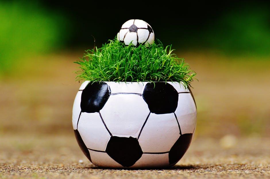 european-championship-football-2016-grass-163475